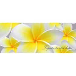Virágok vlies poszter, fotótapéta 033VEP /250x104 cm/