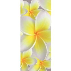 Virágok vlies poszter, fotótapéta 033VET /91x211 cm/