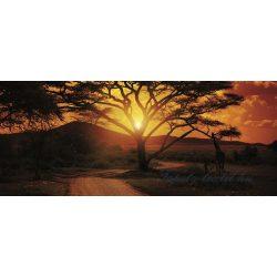 Afrika poszter, fotótapéta 055VEP /250x104 cm/