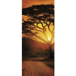 Afrika vlies poszter, fotótapéta 055VET /91x211 cm/