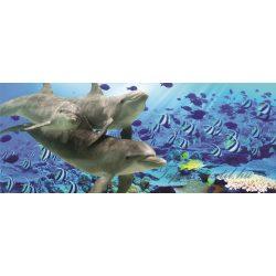 Delfinek poszter, fotótapéta 072VEP /250x104 cm/