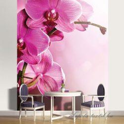 Orchidea poszter, fotótapéta 1033P4-A /184x254/