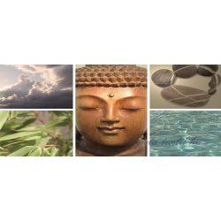 Buddha vlies poszter, fotótapéta 105VEP /250x104 cm/