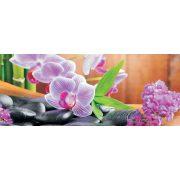 Orchidea poszter, fotótapéta 115VEP /250x104 cm/