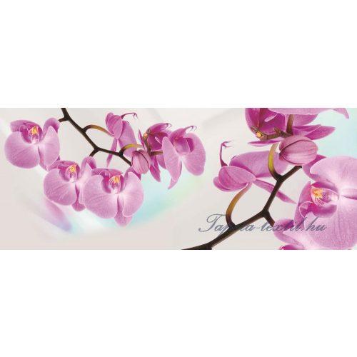 Orchidea vlies poszter, fotótapéta 116VEP /250x104 cm/