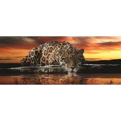 Jaguár poszter, fotótapéta 126VEP /250x104 cm/