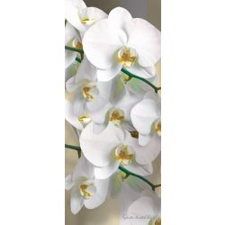 Virág minta vlies poszter, fotótapéta 1304VET /91x211 cm/