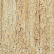 Gekkofix Tree shell öntapadós tapéta 45 cm x 2 m
