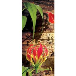Red lilies öntapadós poszter, fotótapéta 1393KT /91x211 cm/