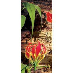 Red lilies vlies poszter, fotótapéta 1393VET /91x211 cm/