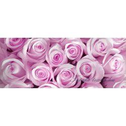 Rózsák poszter, fotótapéta 142VEP /250x104 cm/