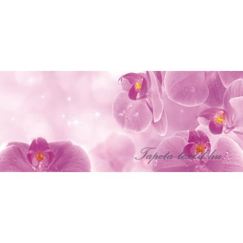 Orchideák vlies poszter, fotótapéta 149VEP /250x104 cm/