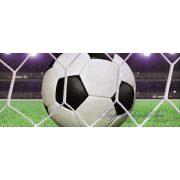 Football vlies poszter, fotótapéta 155VEP /250x104 cm/