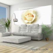 Rózsa vlies poszter, fotótapéta 1551VEP /250x104 cm/