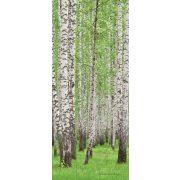 Erdő vlies poszter, fotótapéta 157VET /91x211 cm/
