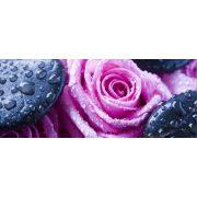 Rózsa poszter, fotótapéta 171VEP /250x104 cm/