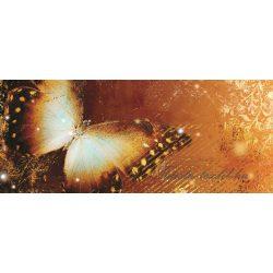 Pillangó poszter, fotótapéta 173VEP /250x104 cm/