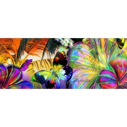 Szines pillangók vlies poszter, fotótapéta 175VEP /250x104 cm/