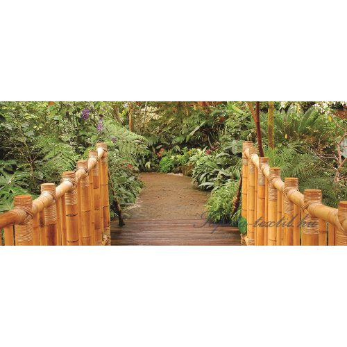 Jungle poszter, fotótapéta 183VEP /250x104 cm/