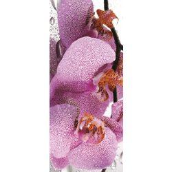 Orchidea vlies poszter, fotótapéta 184VET /91x211 cm/