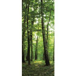 Erdő vlies poszter, fotótapéta 186VET /0,91x211 cm/