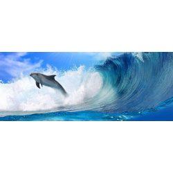Delfin poszter, fotótapéta 188VEP /250x104 cm/