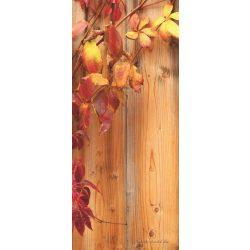 Ivy öntapadós poszter, fotótapéta 189SKT /91x211 cm/