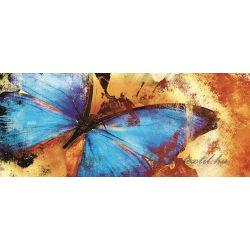 Pillangó poszter, fotótapéta 192VEP /250x104 cm/