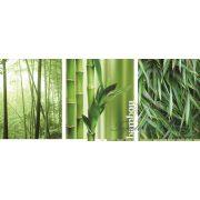 Bamboo poszter, fotótapéta 2-180VEP /250x104 cm/