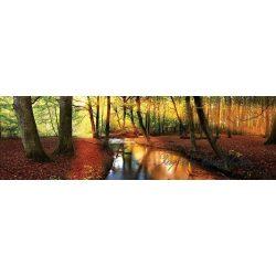 Őszi erdő vlies poszter, fotótapéta 2018VEE-XXL /624x219 cm/