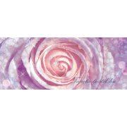 Rózsa vlies poszter, fotótapéta 2157VEP /250x104 cm/