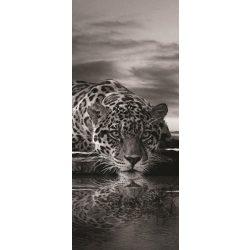 Jaguár vlies poszter, fotótapéta 218VET /91x211 cm/