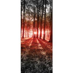 Erdő vlies poszter, fotótapéta 2227VET /91x211 cm/