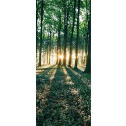 Erdő vlies poszter, fotótapéta 2228VET /91x211 cm/