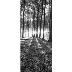 Erdő öntapadós poszter, fotótapéta 2229SKT /91x211 cm/