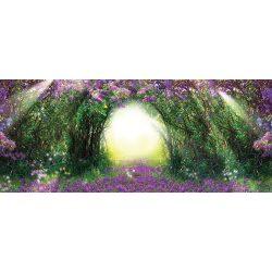 Orgona vlies poszter, fotótapéta 2315VEP /250x104 cm/