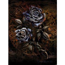 Rózsák poszter, fotótapéta 2370P4-A /184x254/