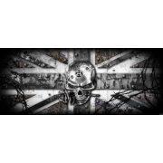 Koponya vlies poszter, fotótapéta 2377VEP /250x104 cm/
