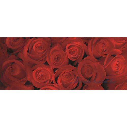 Rózsák poszter, fotótapéta 240VEP /250x104 cm/