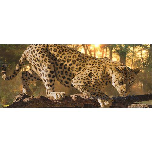 Jaguár poszter, fotótapéta 242VEP /250x104 cm/