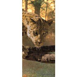 Jaguár vlies poszter, fotótapéta 242VET /91x211 cm/