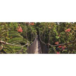 Híd poszter, fotótapéta 250VEP /250x104 cm/