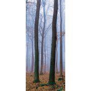 Erdő öntapadós poszter, fotótapéta 2658SKT /91x211 cm/