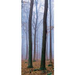 Erdő vlies poszter, fotótapéta 2658VET /91x211 cm/