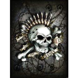 Alchemy: Or Glory poszter, fotótapéta 2691P4-A /184x254/