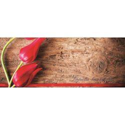 Tulipánok poszter, fotótapéta 272VEP /250x104 cm/