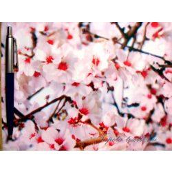 Alkor Cseresznyevirág öntapadós tapéta 45 cm x 15 m VIP