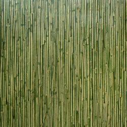 Alkor Rufa grün öntapadós tapéta 45 cm x 15 m