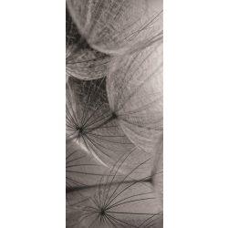 Pitypang vlies poszter, fotótapéta 281VET /91x211 cm/