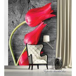 Tulipánok poszter, fotótapéta 282P4-A /184x254/